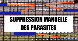Exemple de suppression de images parasites {JPEG}